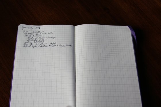 Bullet Journal for the day to day tasks